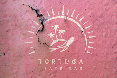 tortuga_logo_4b